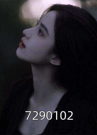 7290102小说