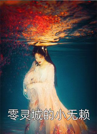 零灵城的小无赖小说