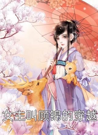 女主叫顾锦的穿越小说