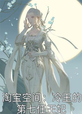 淘宝空间:冷王的第七任王妃小说