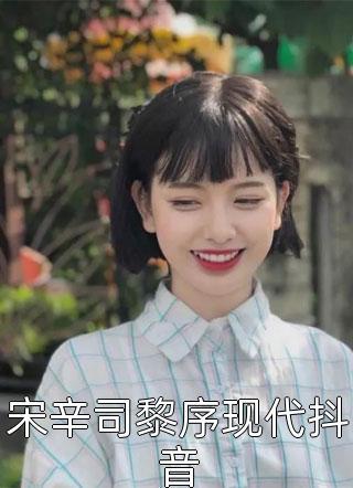 宋辛司黎序现代抖音小说