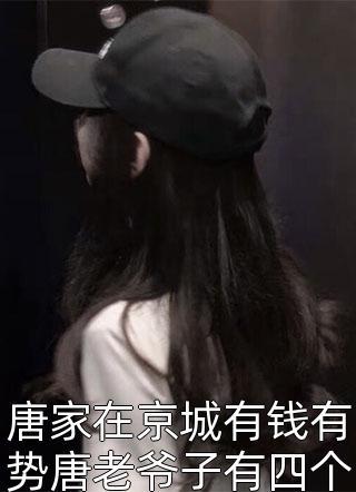唐家在京城有钱有势唐老爷子有四个孙子小说