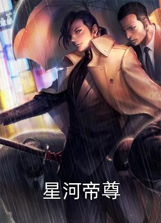 星河帝尊小说