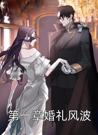 第一章婚礼风波小说