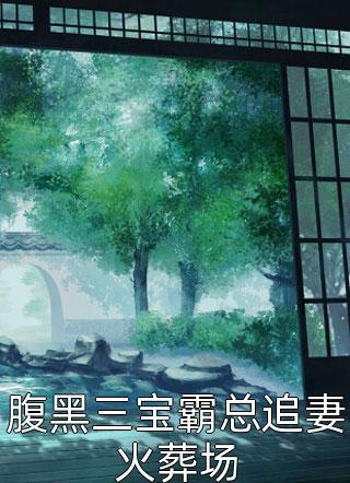 腹黑三宝霸总追妻火葬场小说