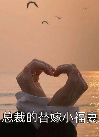 总裁的替嫁小福妻小说