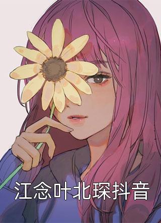 江念叶北琛抖音小说