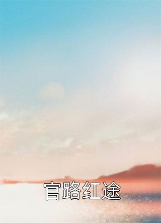 官路红途小说