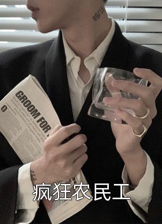 疯狂农民工小说
